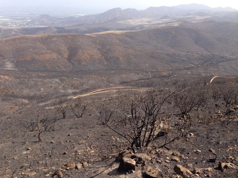 Western SM Mtns on Fire-img_1287-r.jpg