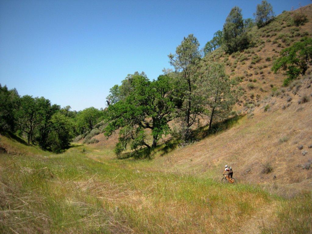 Coe ride Saturday 4/20. 9:30 @ Hunting Hollow-img_1311.jpg