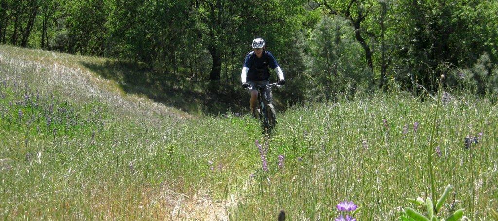 Coe ride Saturday 4/20. 9:30 @ Hunting Hollow-img_1315.jpg