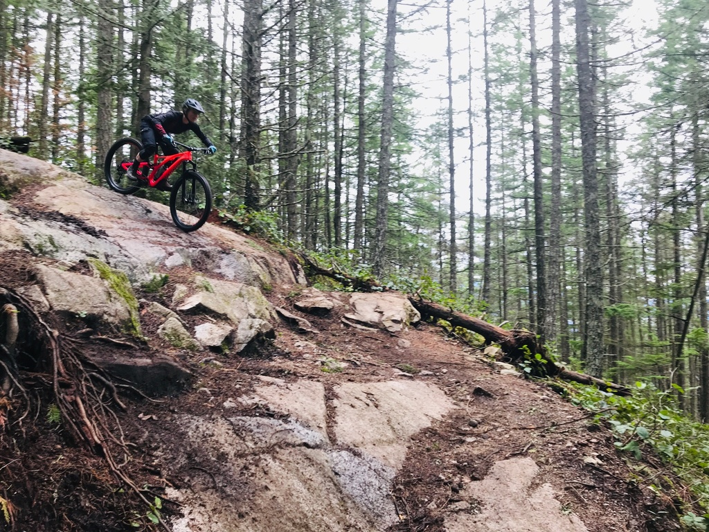 New Stumpjumper has been launched-img_1332.jpg
