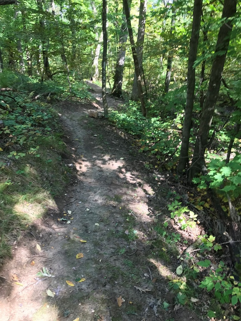 Show a Pic of Your In-process / Recently Finished Trail-img_1344-downsized-3.jpg