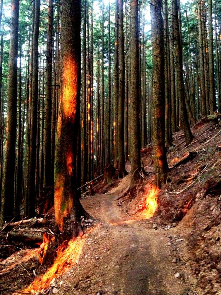 Trail Pics-img_1345.jpg