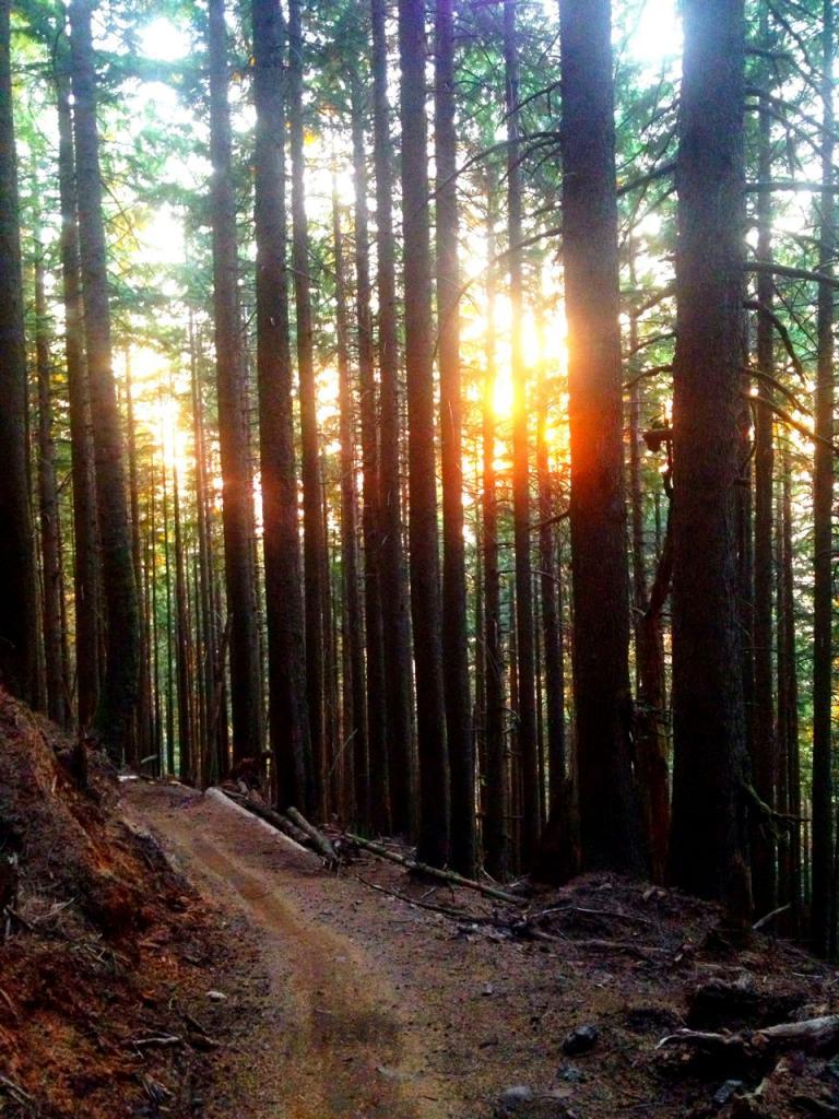 Trail Pics-img_1348.jpg
