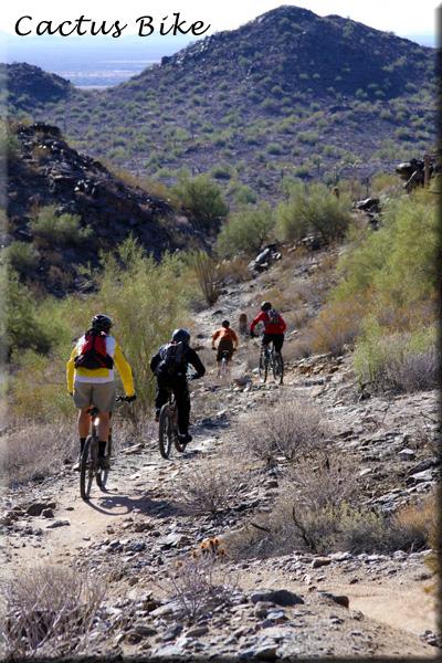 Cactus Bike Group Ride 1/30-img_1355.jpg