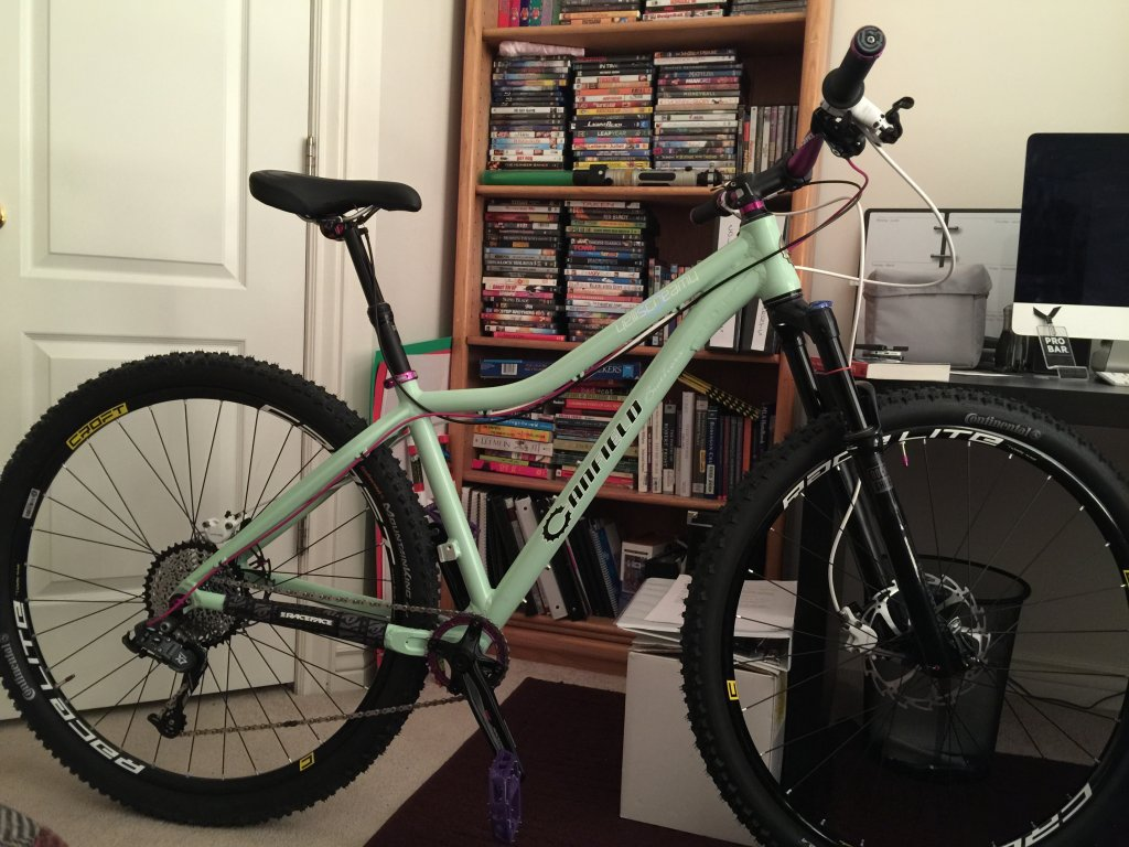 The All Mountain Hardtail Thread. Post up yours.-img_1360.jpg