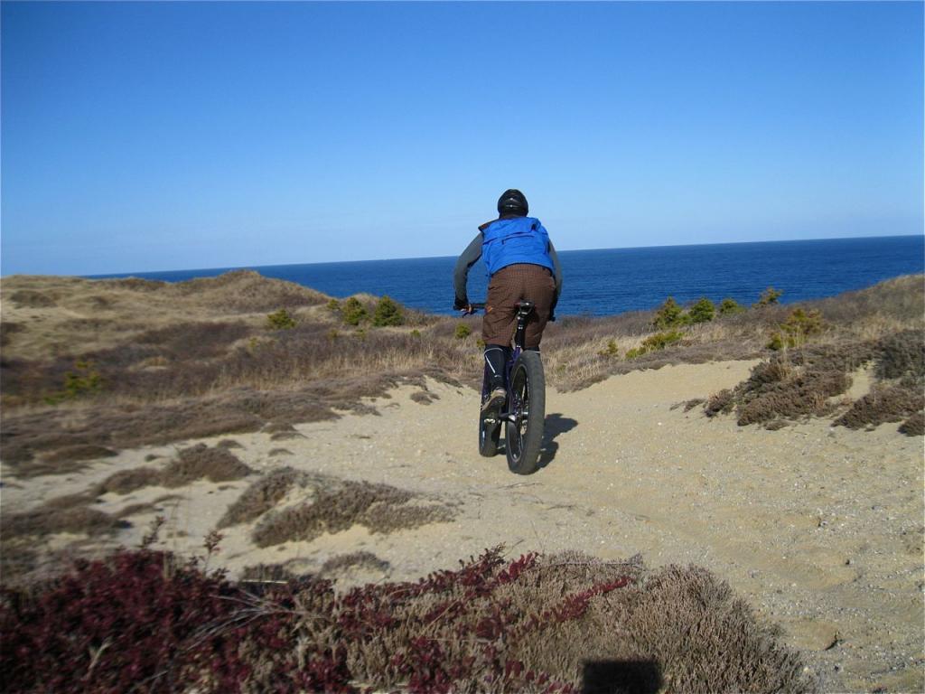 Beach/Sand riding picture thread.-img_1387.jpg