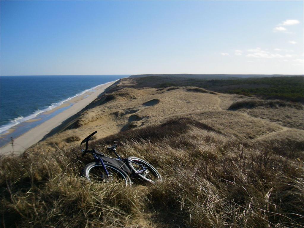 Beach/Sand riding picture thread.-img_1399.jpg