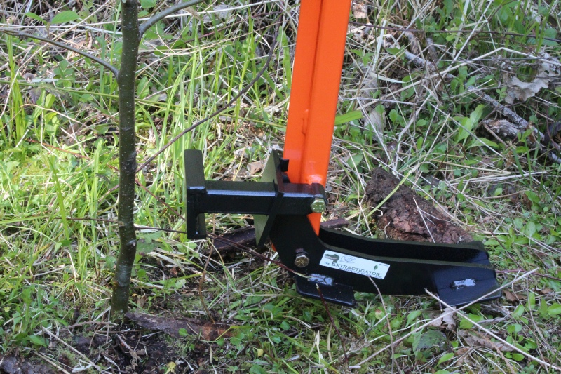 Best tools for clearing baby trees-img_1400.jpg