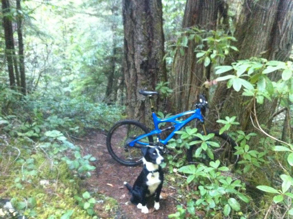 Larison Creek Oakridge Ride-img_1409.jpg