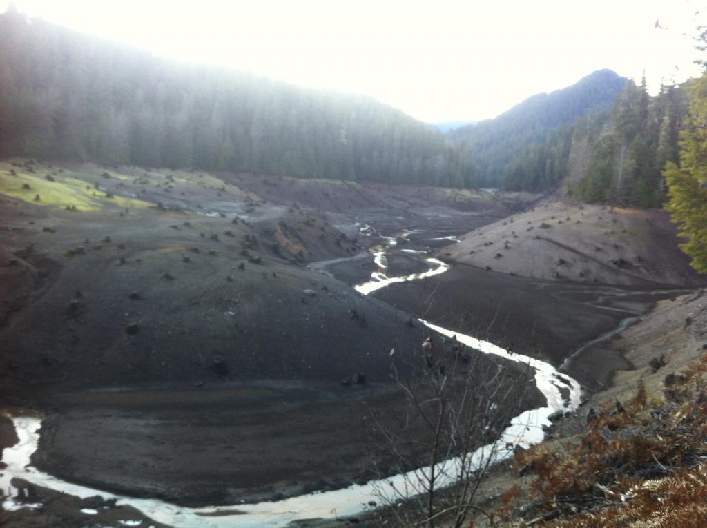 Larison Creek Oakridge Ride-img_1416.jpg