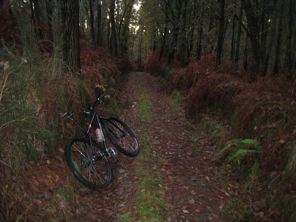 Kona 29er Bikes-img_1442.jpg