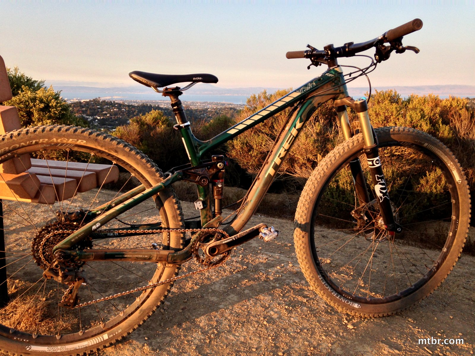 Trek Fuel 29 Project One - Green and Gold