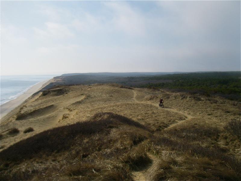 Beach/Sand riding picture thread.-img_1455.jpg