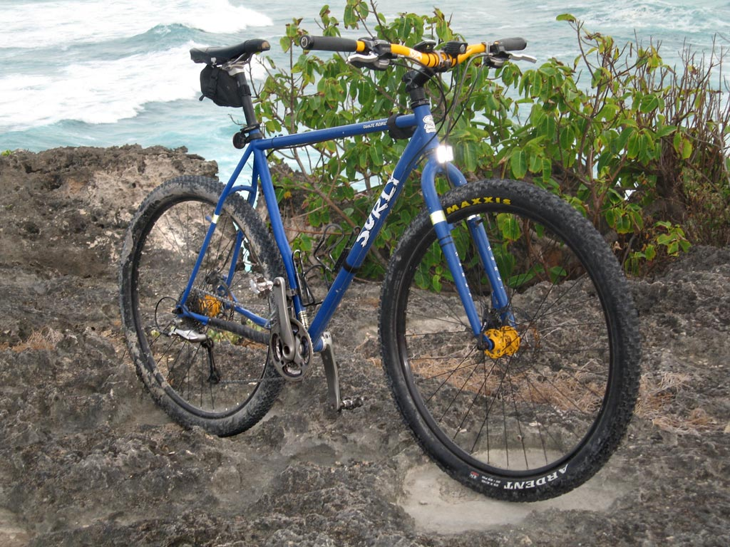 whats your steel 29er set up!-img_1461.jpg