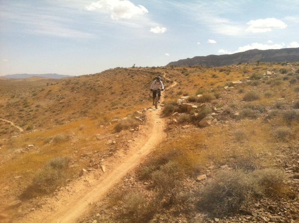 Bears Best MTB Trail-img_1469compress.jpg