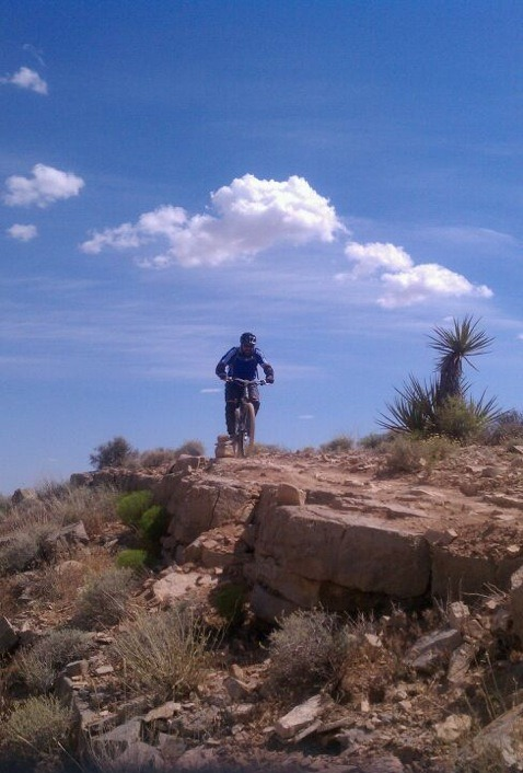 Bears Best MTB Trail-img_1472.jpg