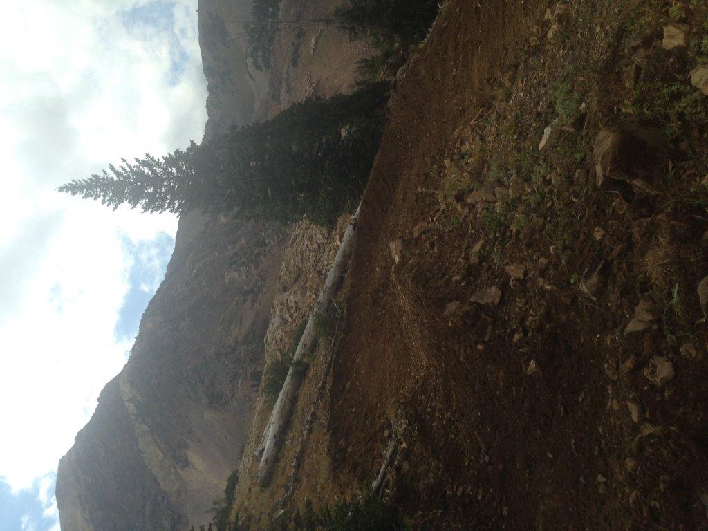 Snowbird Big Mountain Trail-img_1503.jpg