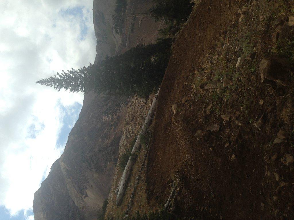 Snowbird Big Mountain Trail-img_1504.jpg