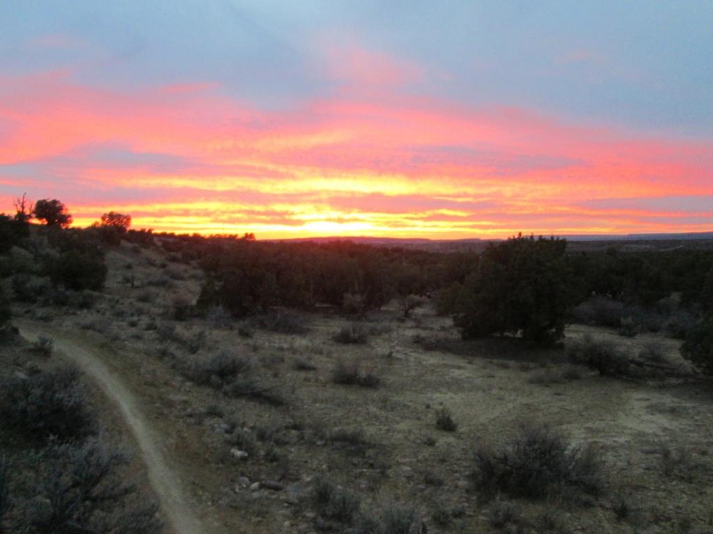 The NM Trail Pix Thread-img_1534.jpg
