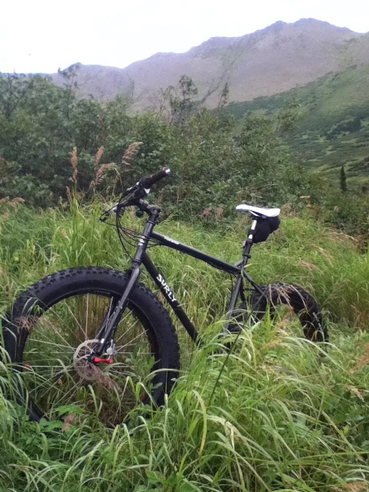 New Rule for Fat Bikes:  Bike Tire Width = Bike Tire Width-img_1534.jpg