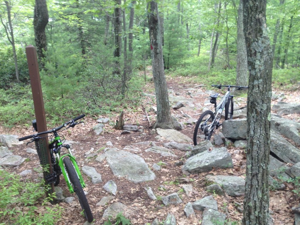 3rd Trail Ride on New Bike - Lessons learned-img_1552-copy.jpg