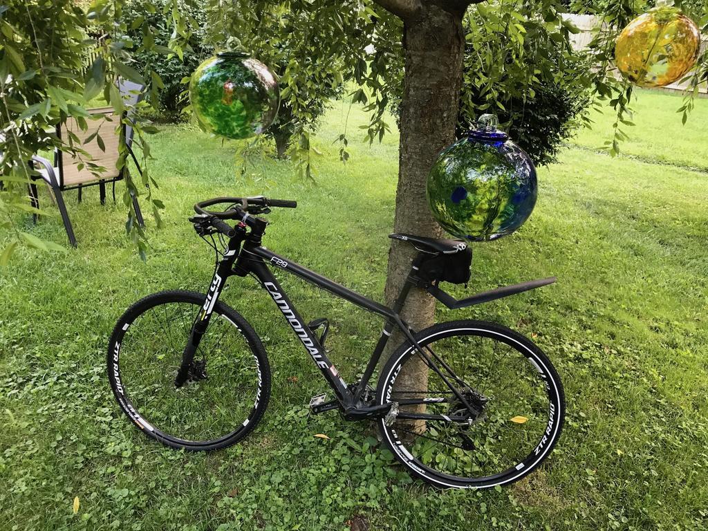 Post your F and Caffeine series bike-img_1581.jpg