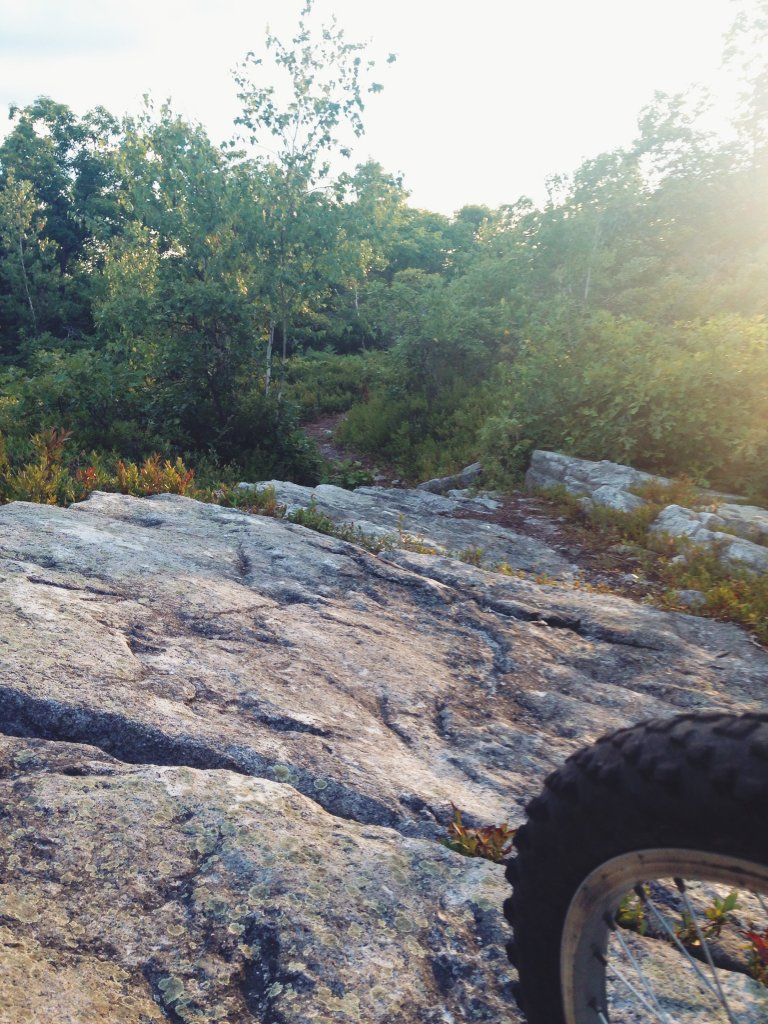 "New trail at Moosic Mountain: ""After Five""-img_1594.jpg"