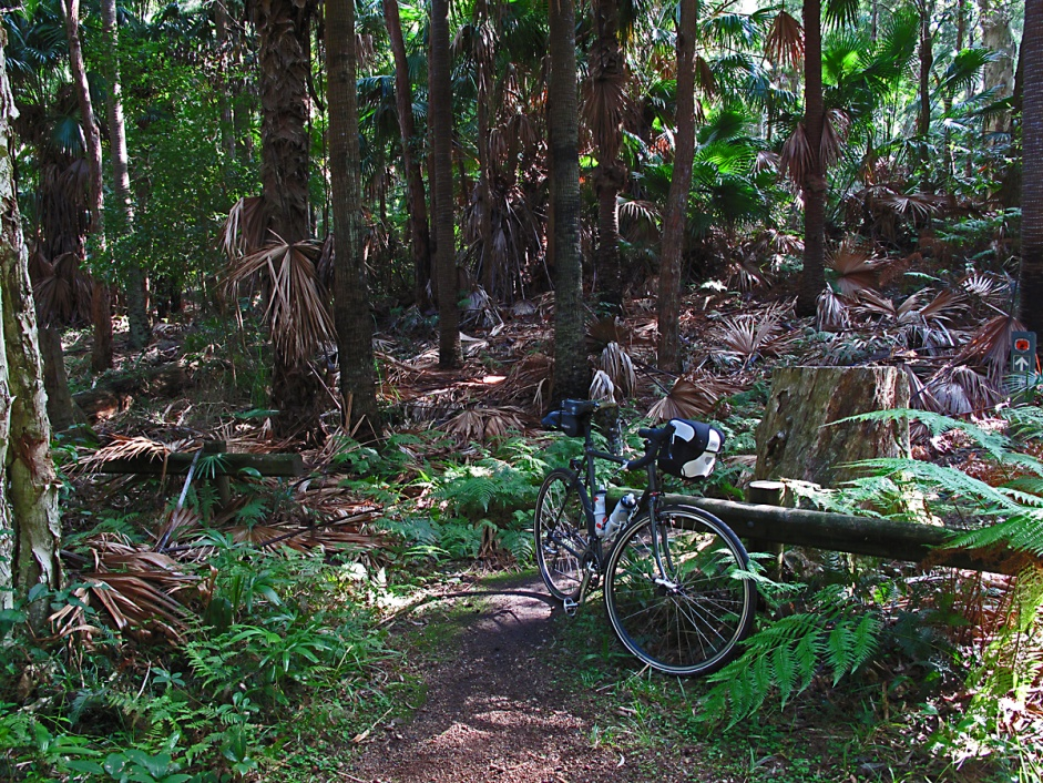 Post pics of your Surly!!!-img_1595.jpg