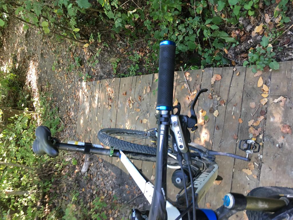 bike +  bridge pics-img_1690.jpg