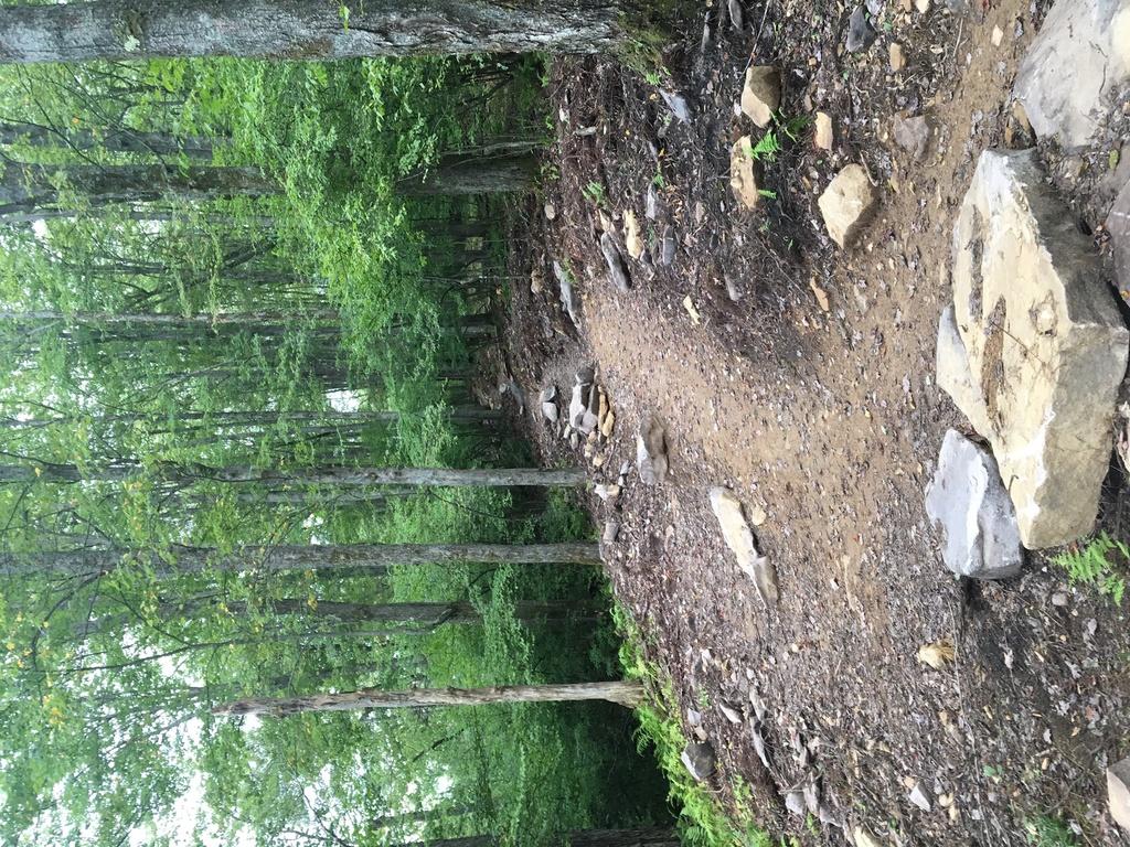 Jake's Rocks Epic Trail System-img_1691.jpg