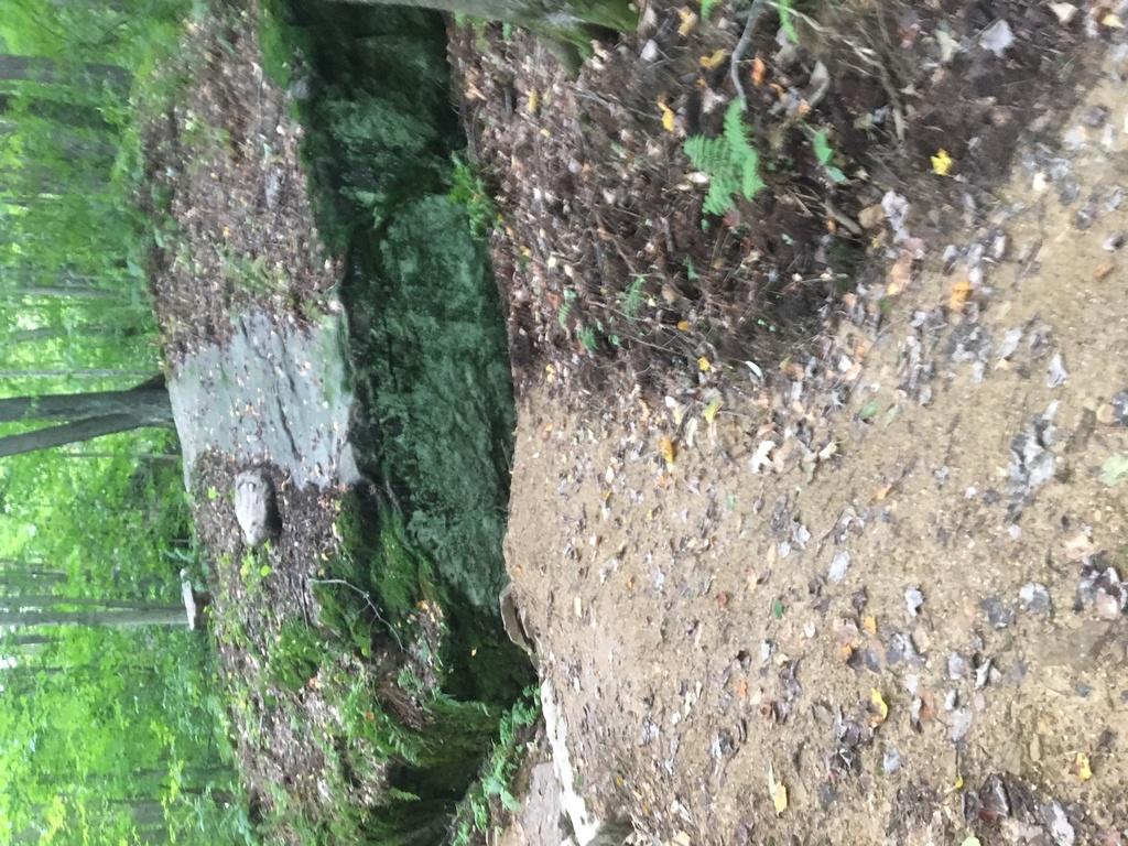 Jake's Rocks Epic Trail System-img_1692.jpg