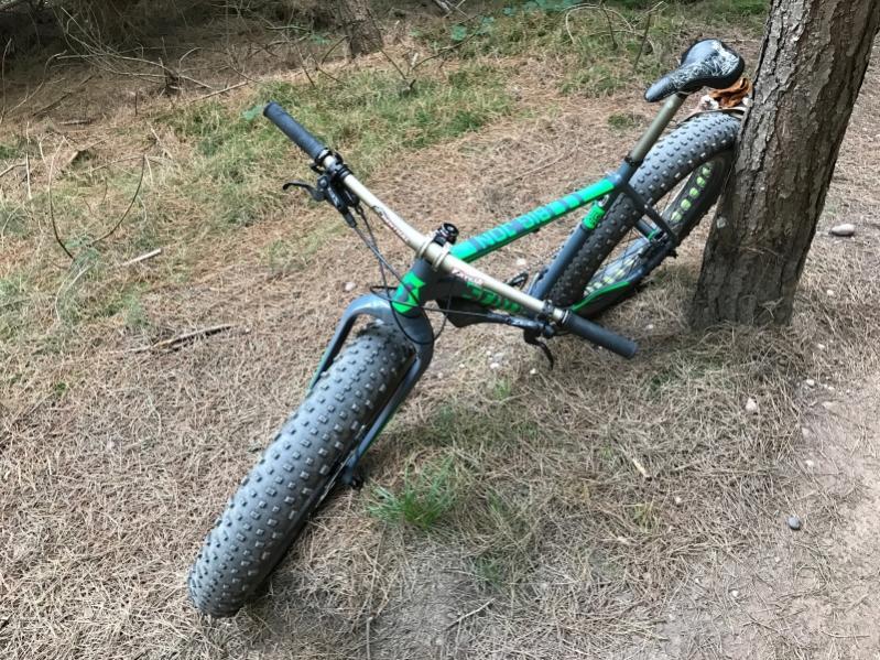 New Scott fat bike: Big Jon-img_1696s.jpg