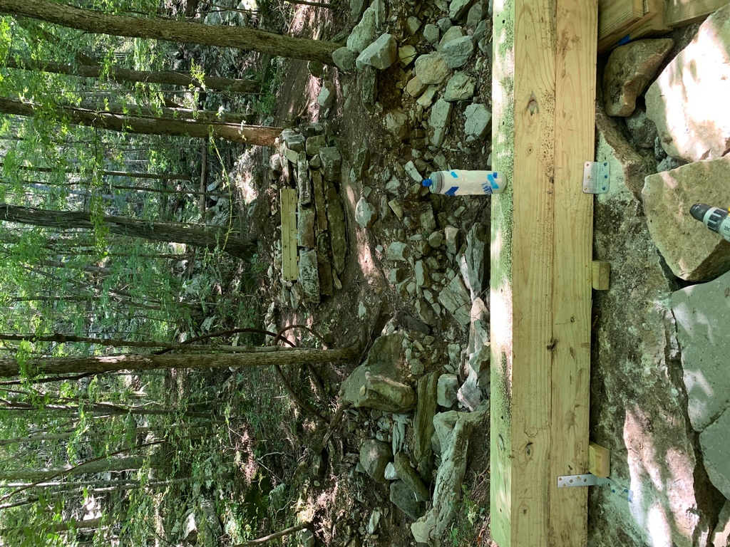 Show a Pic of Your In-process / Recently Finished Trail-img_1705.jpg