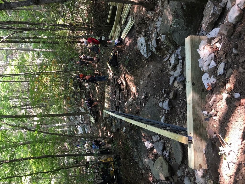 Show a Pic of Your In-process / Recently Finished Trail-img_1714.jpg