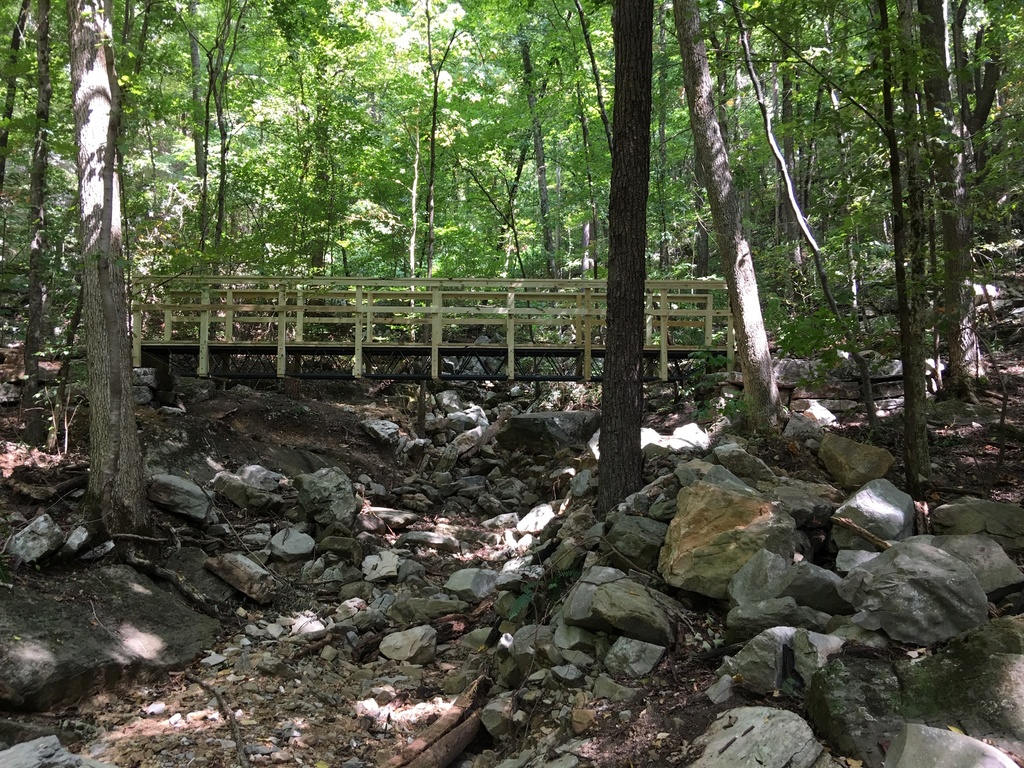 Show a Pic of Your In-process / Recently Finished Trail-img_1718.jpg