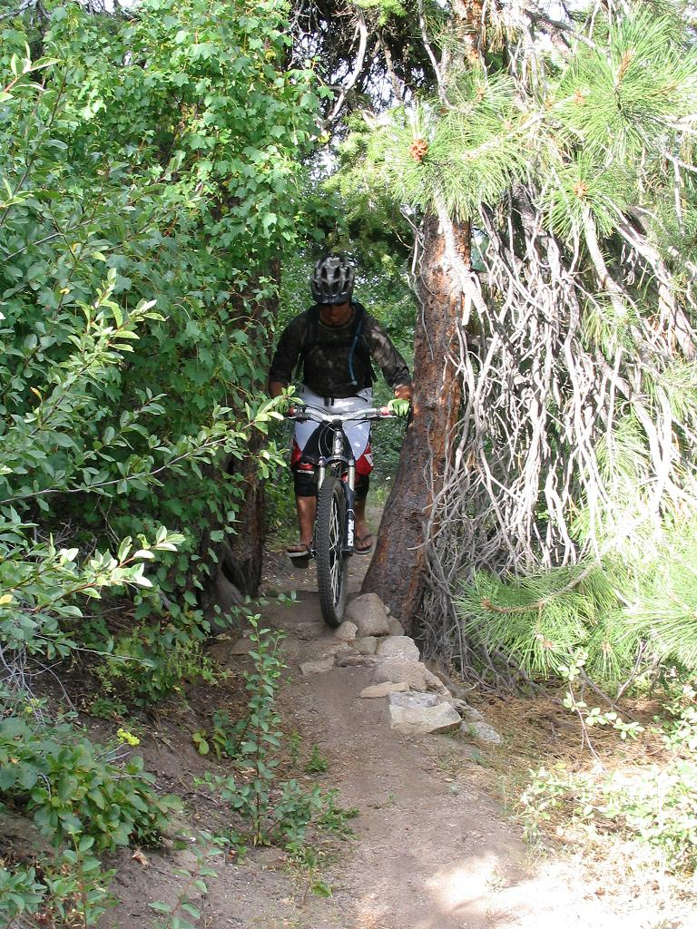 The end of mtn biking on Hulls Gulch?-img_1777_2.jpg