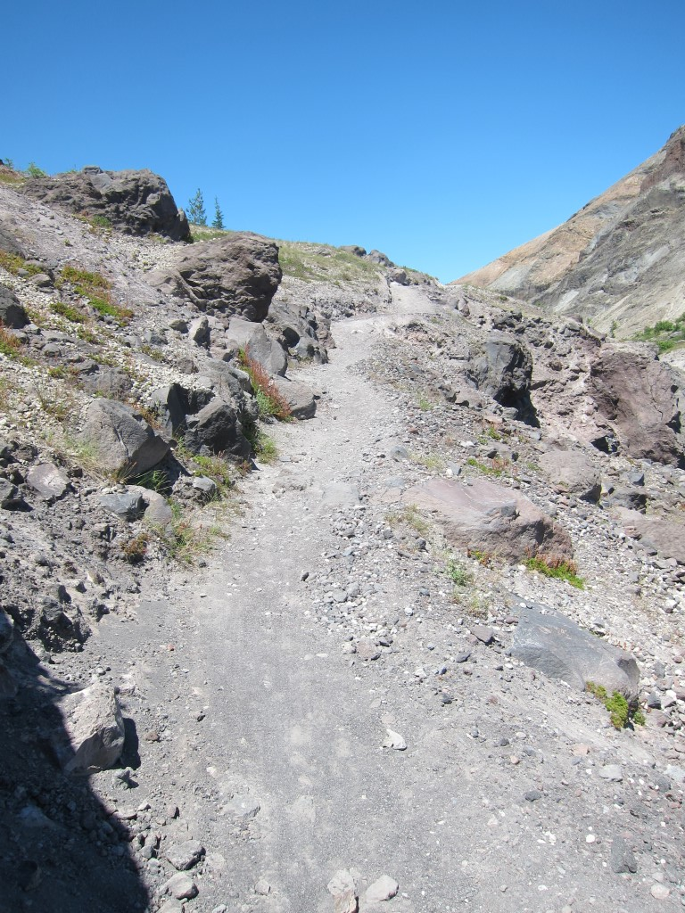 Riding Mt. St. Helens Solo?-img_1778.jpg
