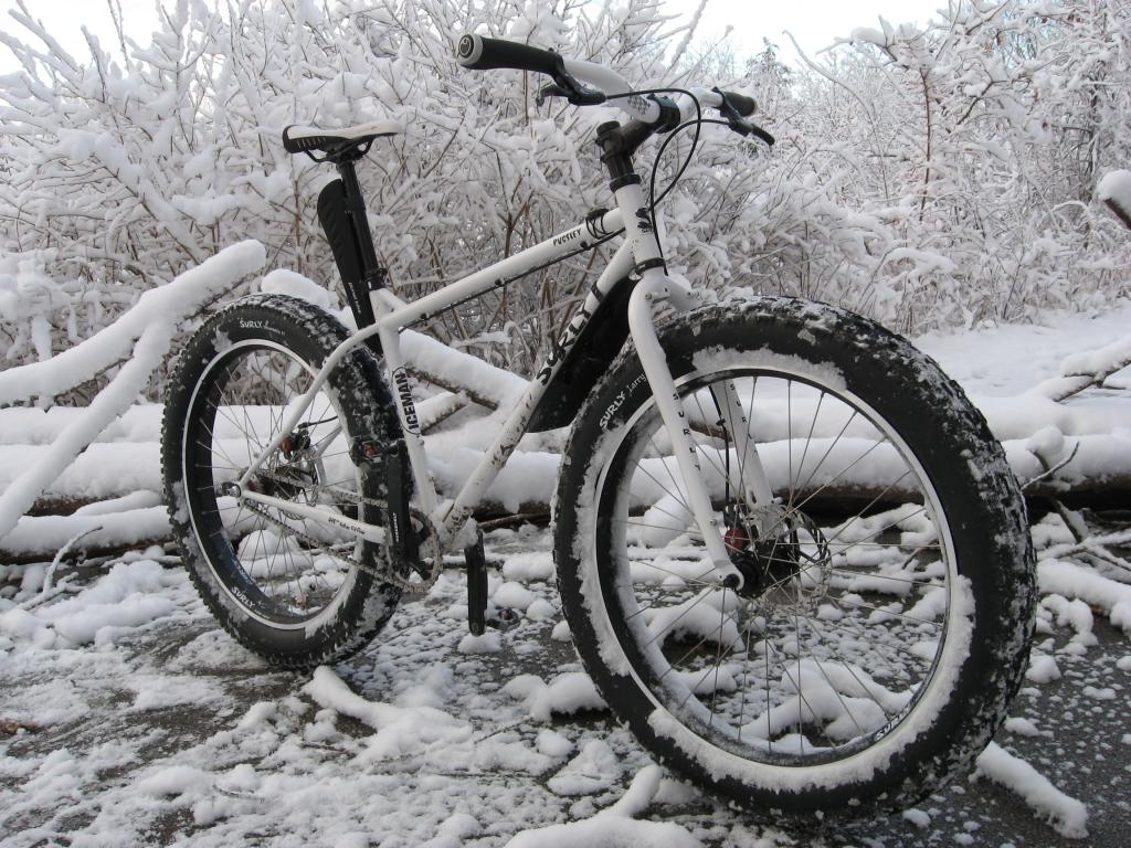 Lets see some SS fatbikes!-img_1797.jpg