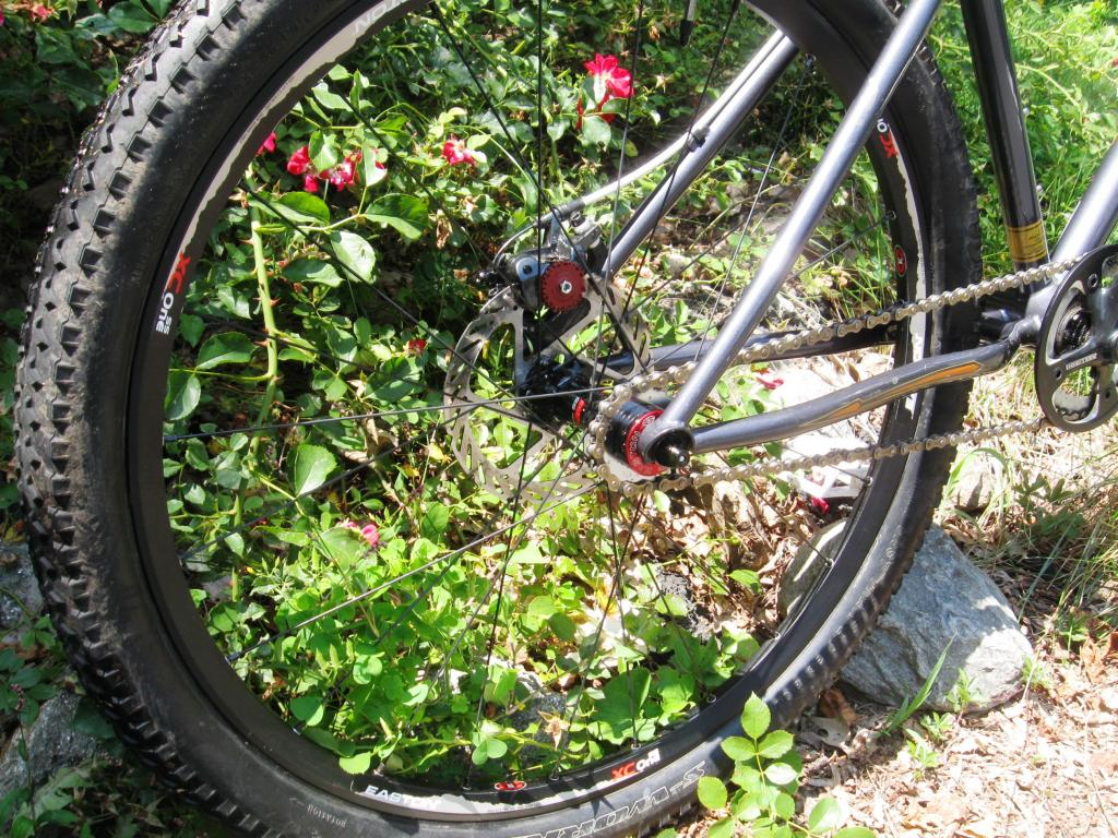 """The """"New"""" Post Your Singlespeed!-img_1817.jpg"""
