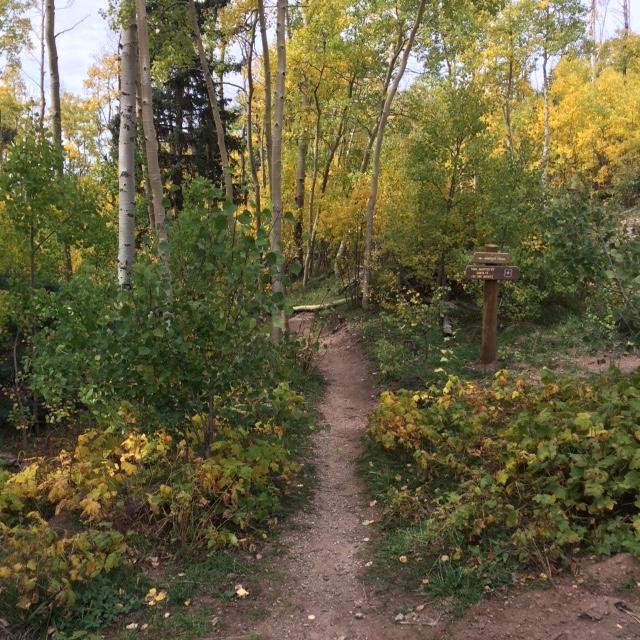 The NM Trail Pix Thread-img_1825.jpg