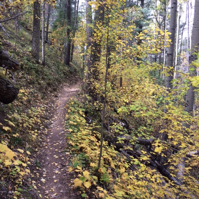 The NM Trail Pix Thread-img_1826.jpg