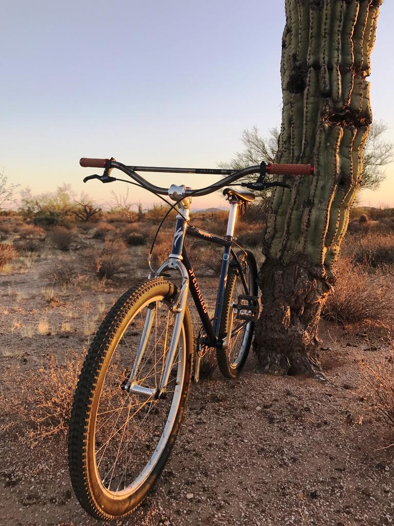 "The ""New"" Post Your Singlespeed!-img_1838-1.jpg"
