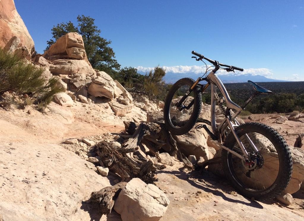 shreddy fun fat bikes?-img_1846.jpg