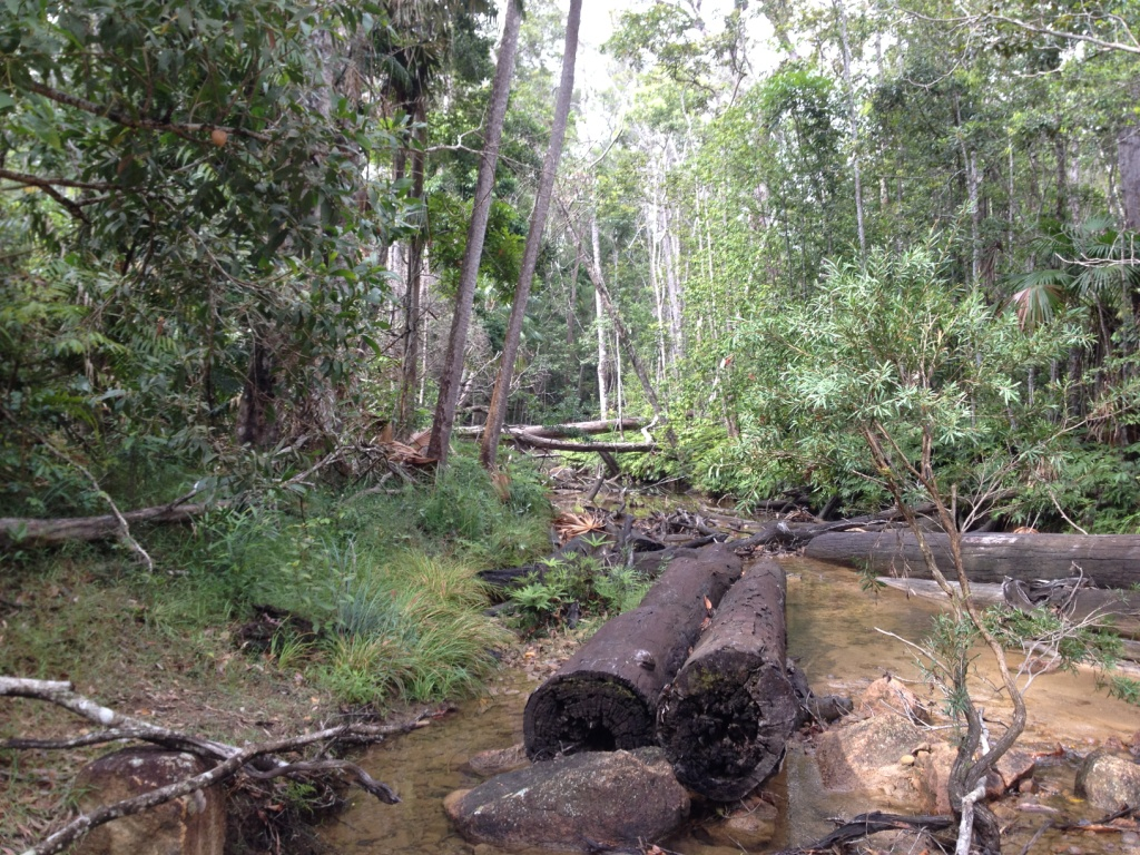 Overnighter - North Queensland-img_1852.jpg