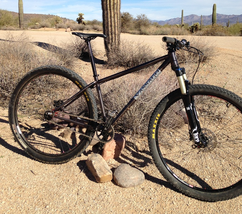 Steel hardtail with air fork-img_1917-s.jpg