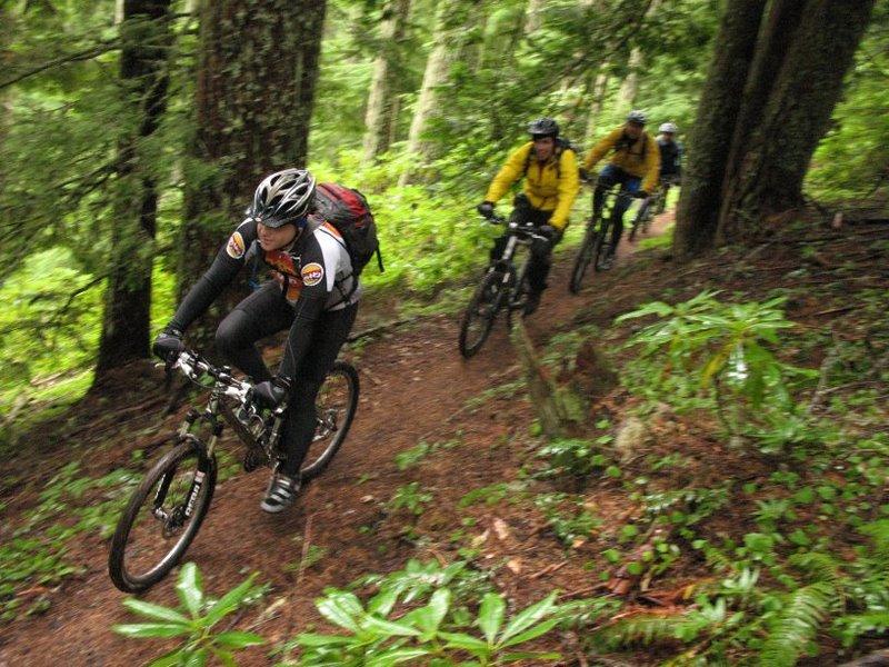 MBO - Mountain Bike Oregon July and August-img_1921.jpg
