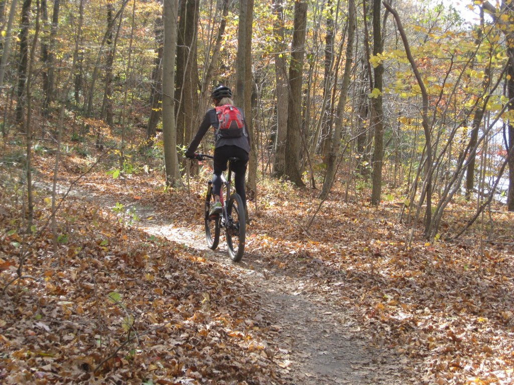 Post Pics of your Fall Foliage!!-img_1934.jpg