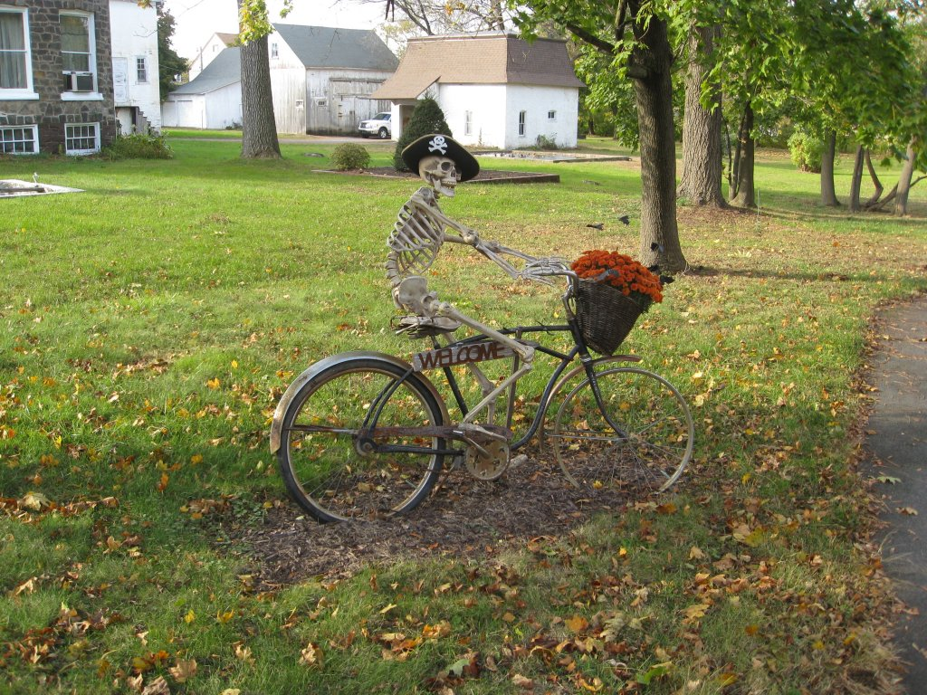 Post Pics of your Fall Foliage!!-img_1946.jpg
