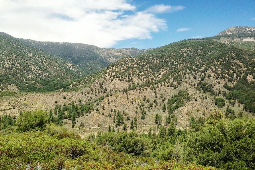 RR: Santa Ana River Trail (SART) - Southern California-img_1980.jpg
