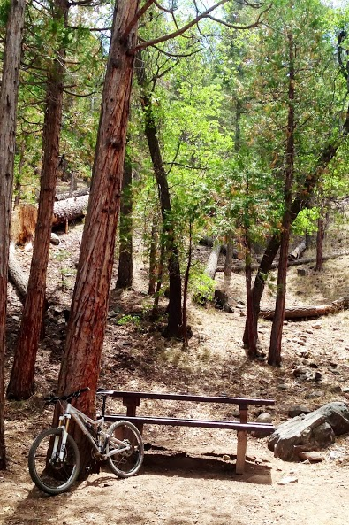 RR: Santa Ana River Trail (SART) - Southern California-img_1991.jpg